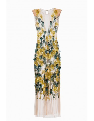 Elisabetta Franchi Long dress with embroideries | Buy Online - AB75492E2