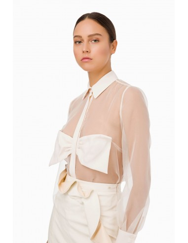 Elisabetta Franchi Blouse with maxi bow | Buy Online - CA19992E2