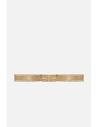 Elisabetta Franchi Riem met ingeweven goudpatroon - altamoda.shop - CT50D06E2